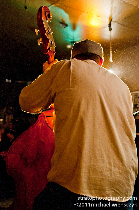 Rear View Upright Bassist